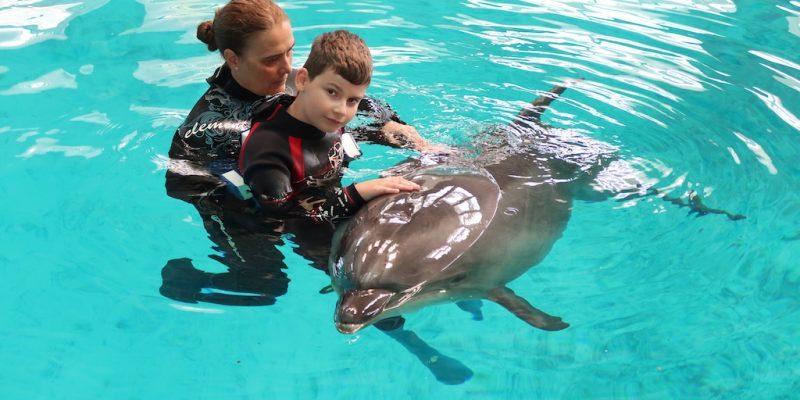 delfinoterapia-marko-rumuncko-constanta-delfin-terapia-of0fxy6eqii5tv83wivpfnr48t2qpa7trr9xdlpmlc